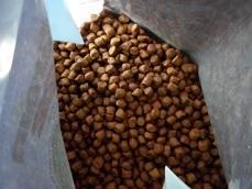 grain2-3.jpg