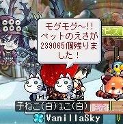 Maple170519_230655.jpg