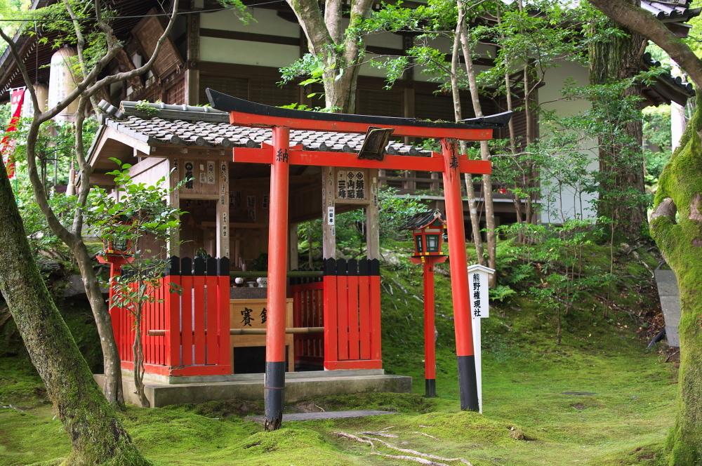 泉涌寺 (4)