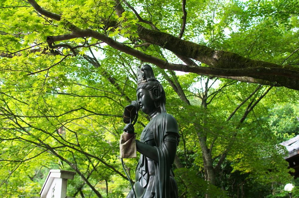 泉涌寺 (5)
