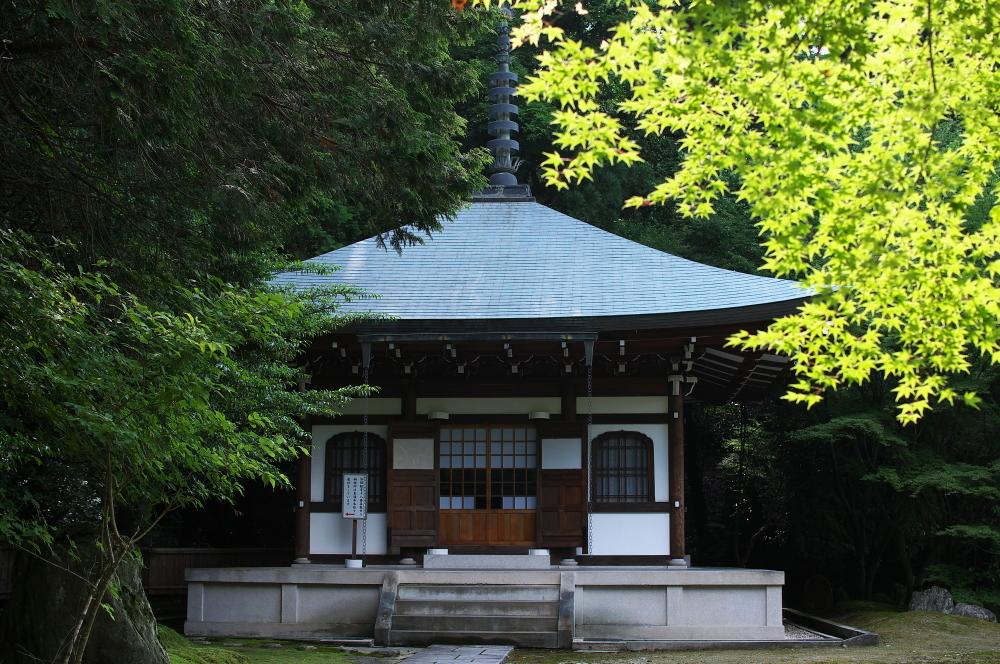 泉涌寺 (6)
