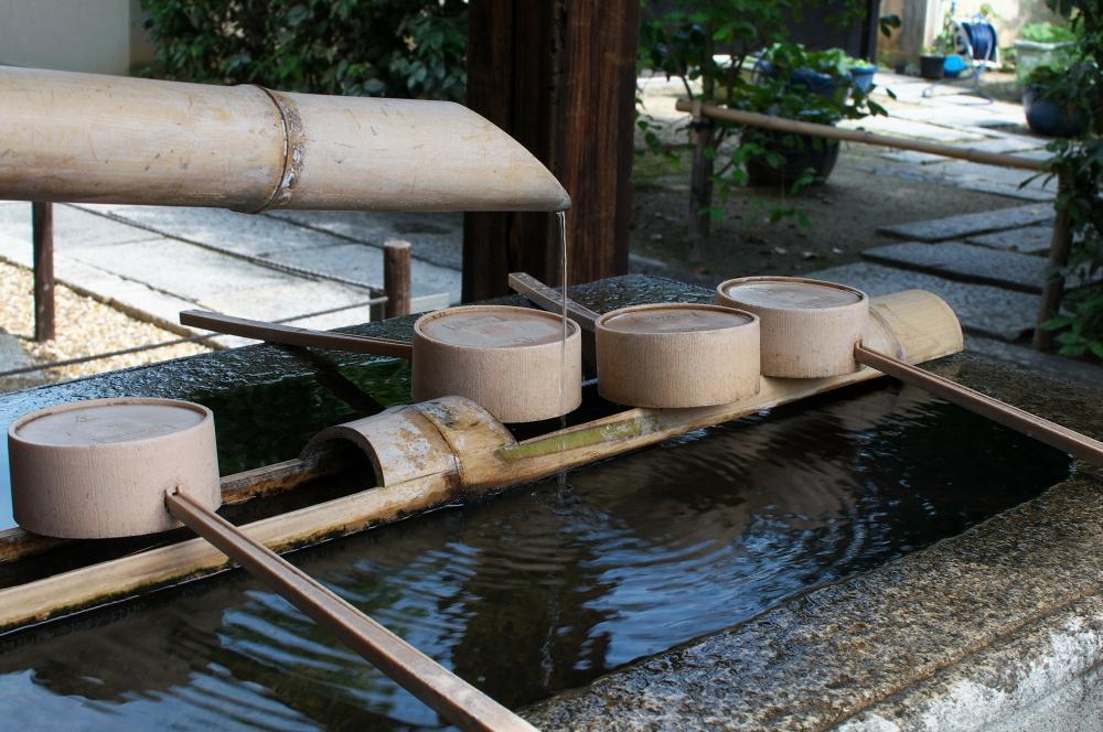 水絡み (1)