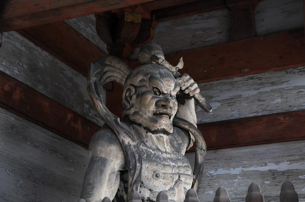 仁和寺 (5)