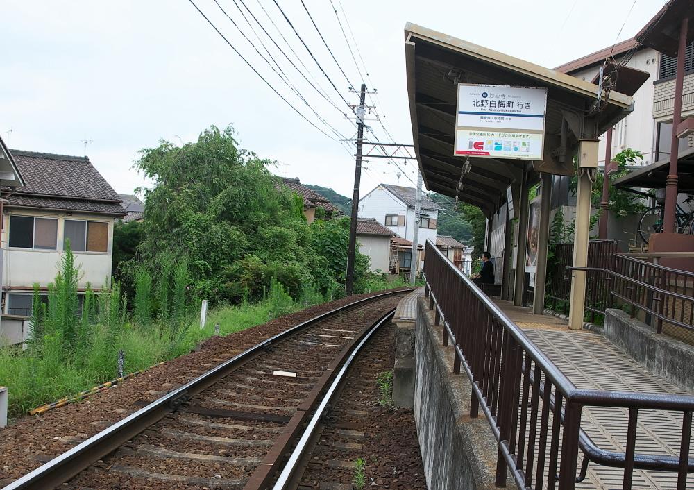 妙心寺 (1)