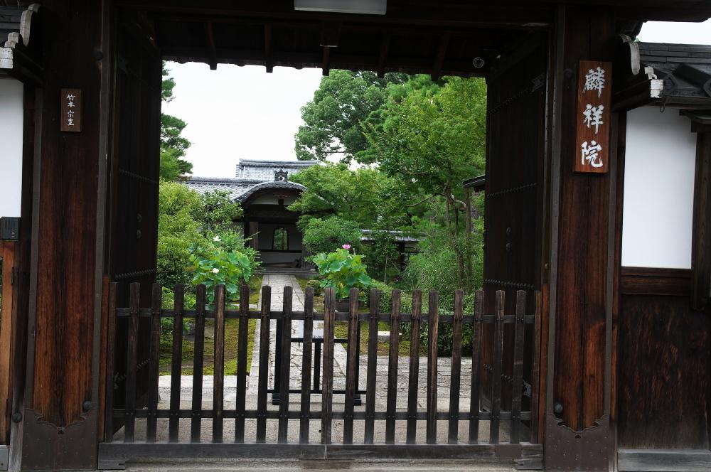 妙心寺 (5)