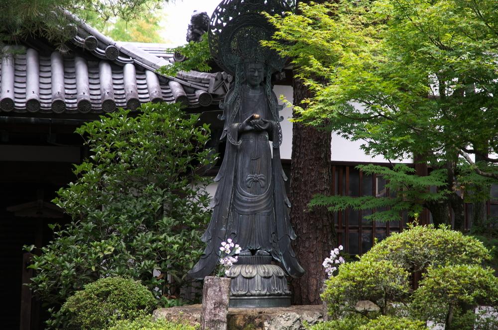 妙心寺 (6)