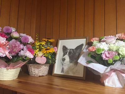 ヴィッキー鉛筆画と花s