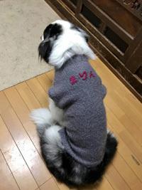 まりんちゃんセーター