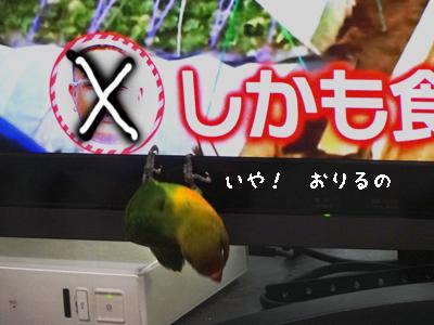 テレビ好き5