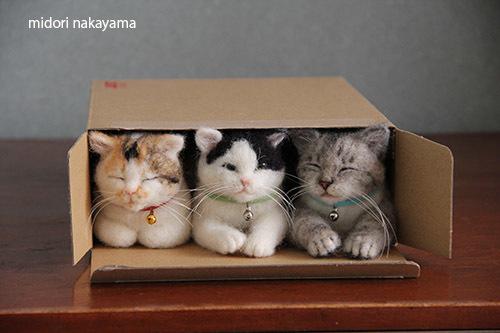 IMG_7608midorinakayama.jpg