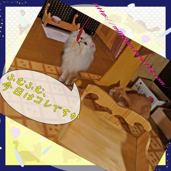20170908HurokuDeAsobu007.jpg