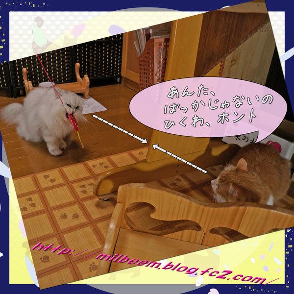 20170908HurokuDeAsobu010.jpg