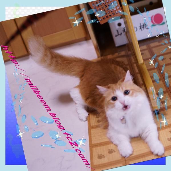 huruiHuroku011.jpg