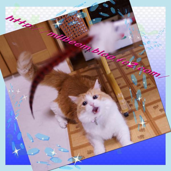 huruiHuroku012.jpg
