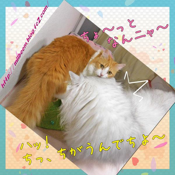 kasaOyatuDeco005.jpg