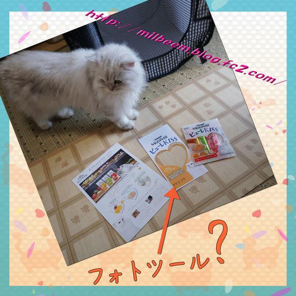 nozokimado002.jpg