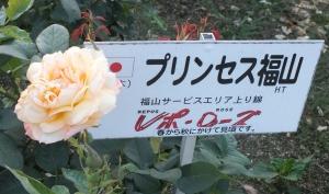 福山03a