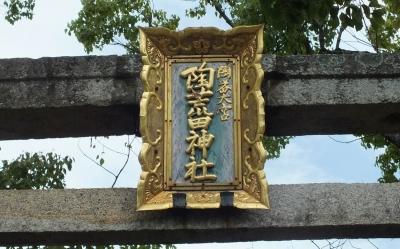 陶荒田01額
