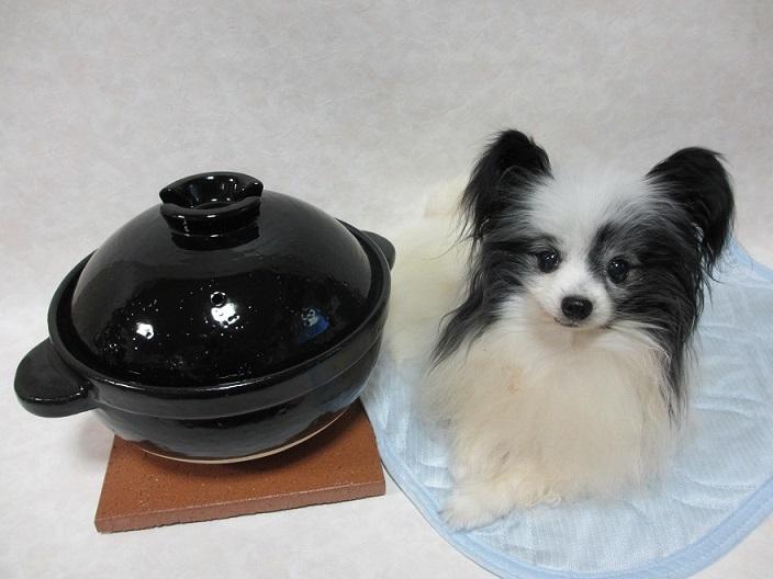 土鍋 (2)