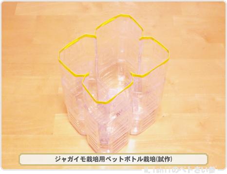 ジャガイモの試験栽培02
