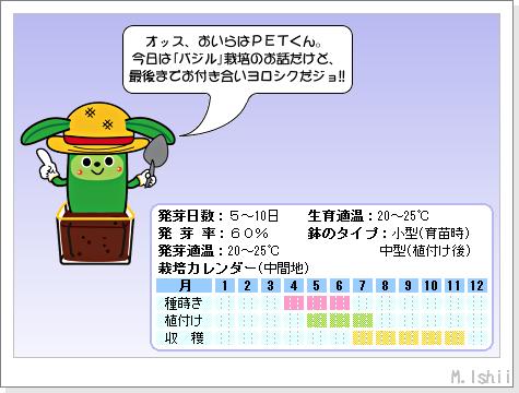 ハーブのペット栽培(バジル・改)01