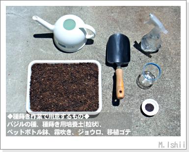 ハーブのペット栽培(バジル・改)03