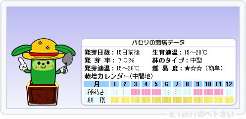 ペトさい(パセリ)09