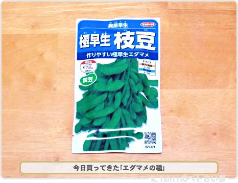 枝豆の種2017