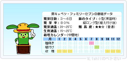 ペトさい(芽キャベツ)09