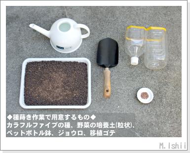 ペット栽培III(カラフルファイブ)03