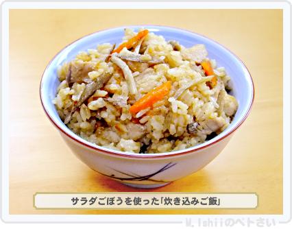 ペトさい(サラダごぼう)40