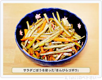ペトさい(サラダごぼう)41
