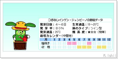 ペット栽培III(つるなしインゲン・改)03