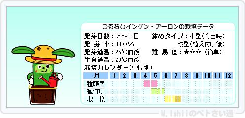 ペトさい(つるなしインゲン・改)15