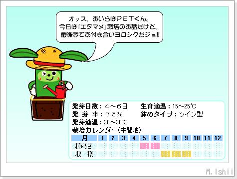 ペット栽培III(エダマメ・改)01