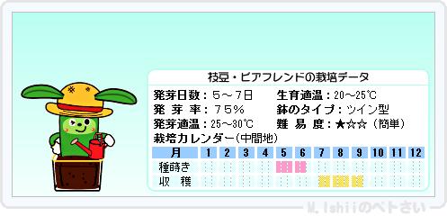 ペトさい(エダマメ・改)19