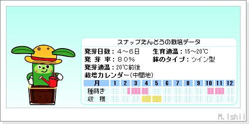 ペット栽培III(スナップえんどうR)02