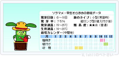 ペトさい(ソラマメ・改)15