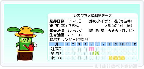 ペトさい(シカクマメ・改)15