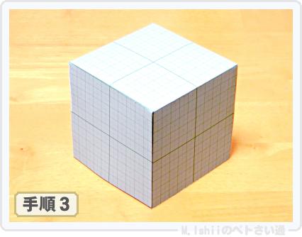 ペトさい(かいわれ大根)04