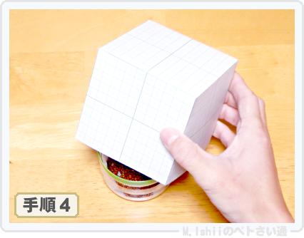 ペトさい(かいわれ大根)10