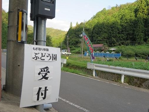tたきれんざん3、2017 052-1i