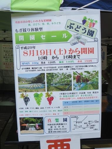 tたきれんざん3、2017 051-1o
