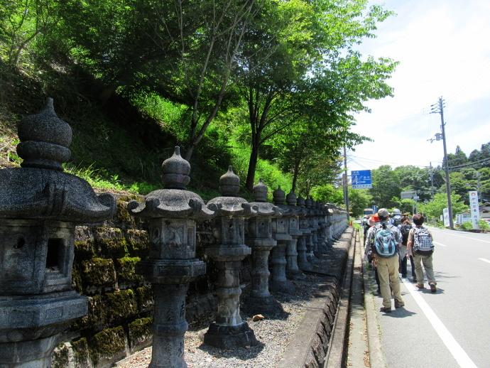 170617アジサイ寺 (2)