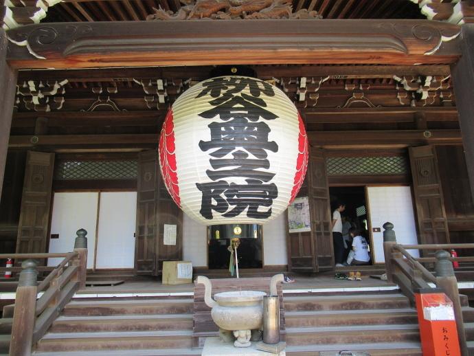 170617アジサイ寺 (5)