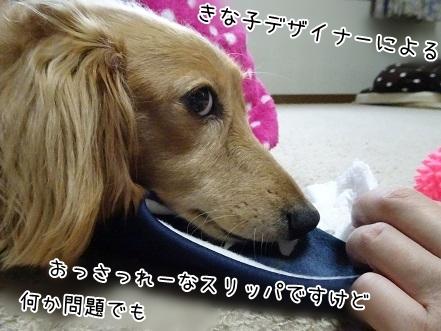 kinako7623.jpg