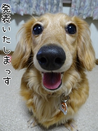 kinako7636.jpg