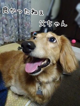 kinako7702.jpg