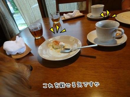 kinako7751.jpg