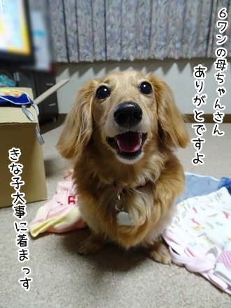 kinako7764.jpg